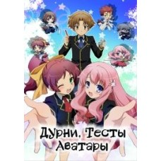 Дурни, Тесты, Аватары / Baka to Test to Shoukanjuu (1 сезон)
